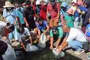Pasca Jebolnya Tembok Tirtagangga, Warga Inisiatif Sumbang 1000 Bibit Ikan Koi