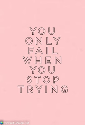 You  Only  Fail  When  You  Stop  Trying.!!  #Inspirationalquotes #motivationalquotes  #quotes
