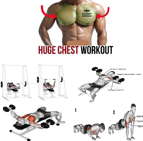 Workouts For Chest –Best 4 Exercises For Building Mass