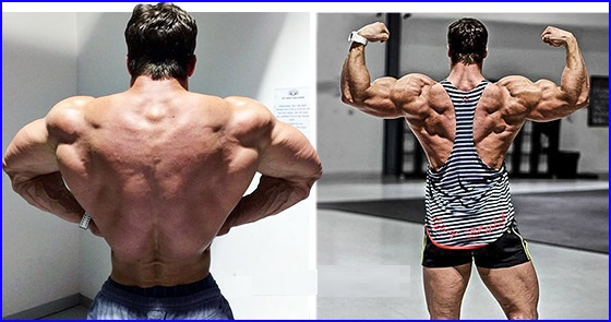 How to build a wide, strong back?The Visual Impact of a V-Taper