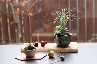 教室の生徒の皆さまの山野草盆栽作品に赤べこ黒べこ、独楽を添えて