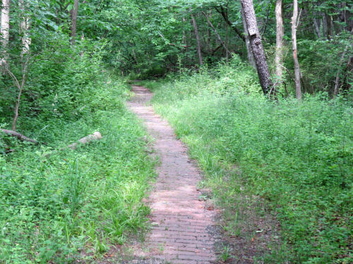 brick trail
