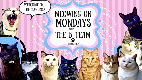 Meowing on Mondays ~ In The Sandbox with The B Team ©BionicBasil®