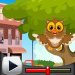 G4K Cute Owl Rescue Game …