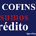 PIS e COFINS – Frigorífico não pode tomar crédito sobre tratamento de afluentes e efluentes