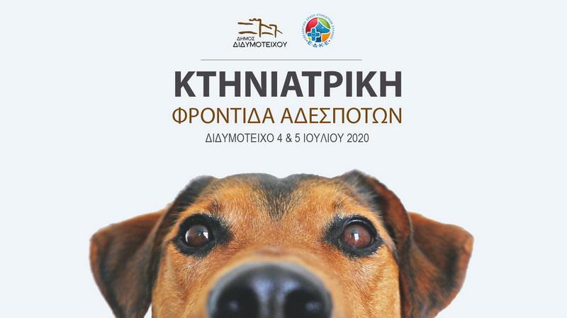 Διδυμότειχο: Συντονισμένη δράση παροχής κτηνιατρικής φροντίδας σε αδέσποτα ζώα