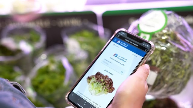 Majid Al Futtaim taps IBM Food Trust