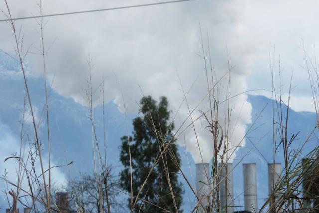 Εντολή για «Λουκέτο» με εντολή Νίκα σε 3 πυρηνελαιουργεία της Μεσσηνίας