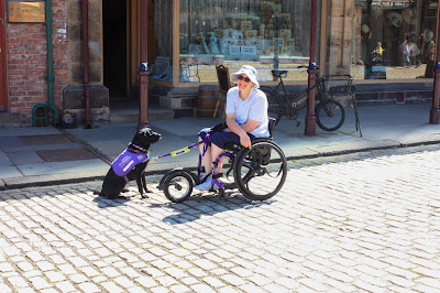 Photo of me in my wheelchair with Loopwheels and a Freewheel. Liggy, my black lab, is sitting in front of me. The road is cobbled and uneven.