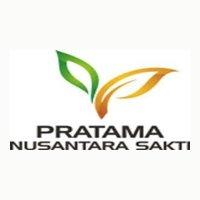 Lowongan Kerja Palembang Agustus 2020 di PT Pratama Nusantara Sakti