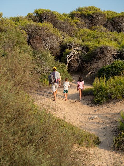 Hombre y dos niños de espaldas caminando entre las dunas de la playa de Punta della Suina