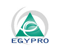 Job Opportunity at Egypro East Africa Ltd, Project Coordinator