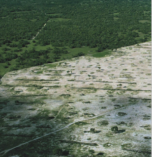 El pantanal Dos estaciones, el humedal más extenso del planeta