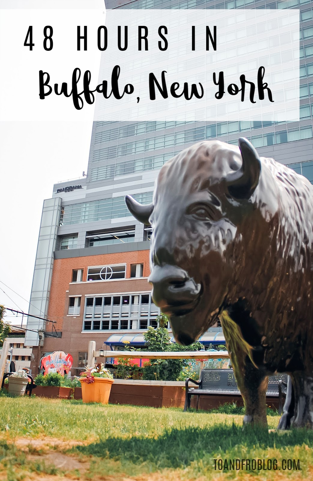 What to see and do in 48 hours in Buffalo, New York