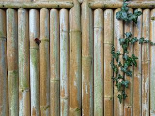 agar-pagar-bambu-awet.jpg