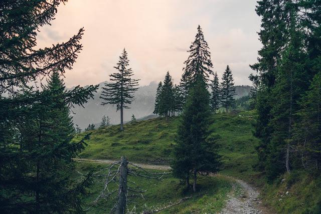 Regenwandern im Brandnertal Bürserberg Furkla Höhenweg + Kesselfall | Wandern Vorarlberg 08
