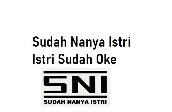 Bahasa Gaul SNI dan ISO