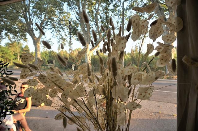 Floral, fleuriste écologique Puyricard
