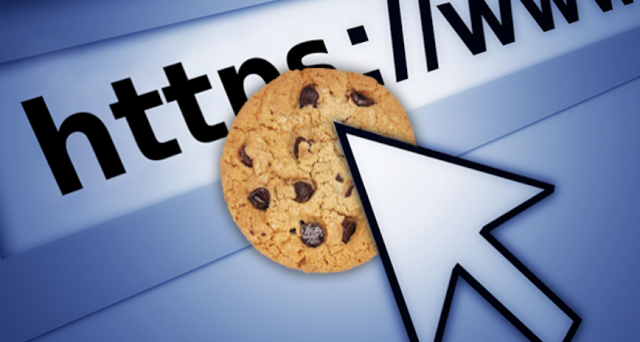 Cookie (Çerez) Nedir? ne demektir? Ne işe Yarar?