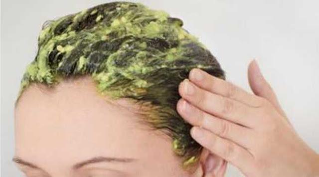 Cara Alami Mengatasi Rambut Kering dan Bercabang - Mempunyai rambut sehat dan berkilau merupakan dambaan bagi setiap orang. Tidak mengherankan jika banyak orang rela berkorban mengeluarkan uang yang banyak untuk perawatan rambut. Terutama bagi kaum wanita, rambut dianggap sebagai mahkota yang harus selalu dijaga. Oleh karena itu, kesehatan rambut menjadi hal utama yang harus diperhatikan.