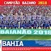 Bahia: Raio-X 2018