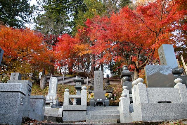 nikko autumn