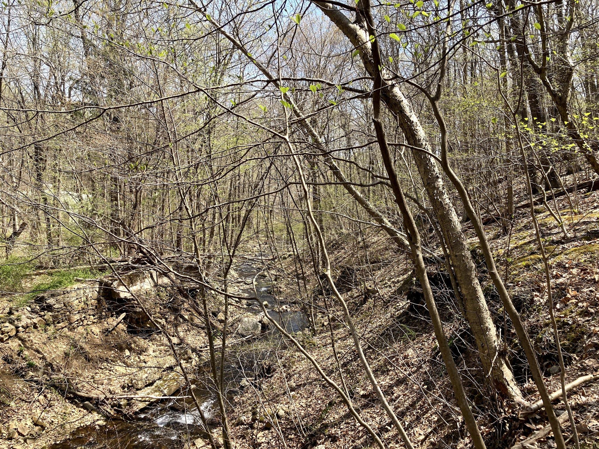 Brass Castle Creek, Roaring Rock Park, Washington Twsp, Warren County