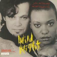 John Mellencamp y Me'Shell Ndegeocello. Wild Night