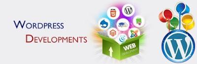 Sr. Web Developer (Wordpress)