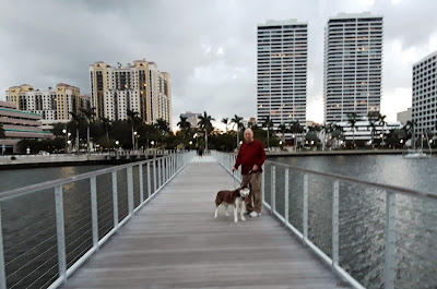 Looking for a travel destination that allows dogs?  Dog friendly West Palm Beach is perfect. There's plenty of dog friendly walking along the water.