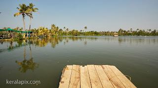 Backwaters at Matsyafed Narakkal Fish Farm, Kochi, Kerala