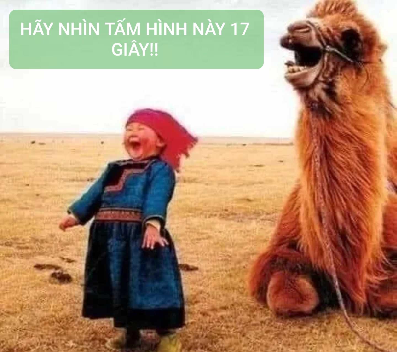 HÃY NHÌN TẤM HÌNH NÀY 17 GIÂY!