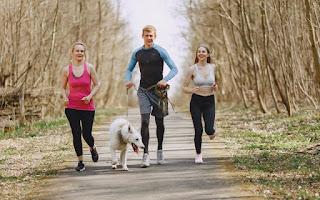 https://www.healthfits.in/2020/06/fitness-qaotes-in-hindi.html