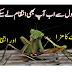 Tidi dal ka hamla | Tidi dal se nijaat | locusts in pakistan