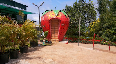 Places to visit in Mahabaleshwar, things to do in mahabaleshwar, mahabaleshwar points, Mapro Garden