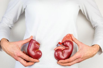 5 Sumber Makanan Penyebab Penyakit Ginjal