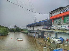 River, flood