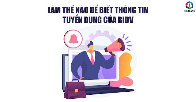 Làm Thế Nào Để Biết Thông Tin Tuyển Dụng Của BIDV