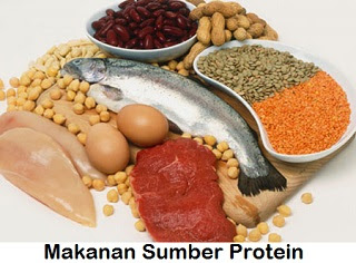 http://manfaatnyasehat.blogspot.com/2013/06/sumber-protein.html