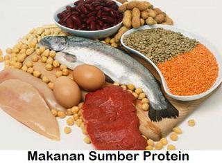 20 Makanan yang Mengandung Sumber Protein Tinggi