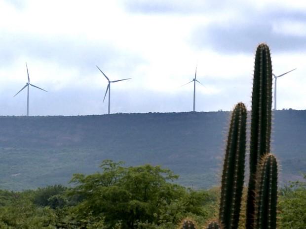 """Estados do Nordeste querem taxar energia do sol e do vento: """"bens da União"""""""