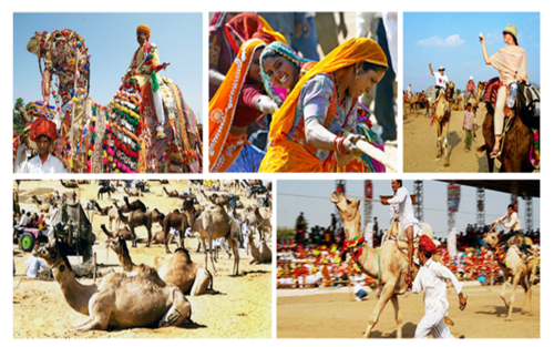 The International Pushkar fair