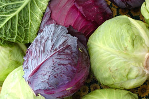 Cabbage is a food that contains very little calories, which is a significant factor in dieting. In addition, the body will supply all the important minerals and vitamins, which will speed up the metabolism and prevent the conversion of carbohydrates to fats.