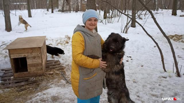 Девушка бросила свою высокооплачиваемую работу, чтобы посвятить себя спасению бездомных собак