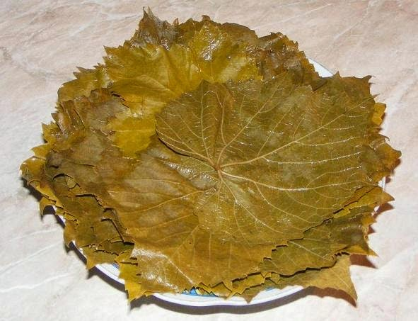 frunze de vita de vie murata pentru sarmale