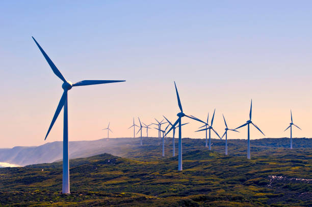 Database for total auctions in wind power sector in 2020