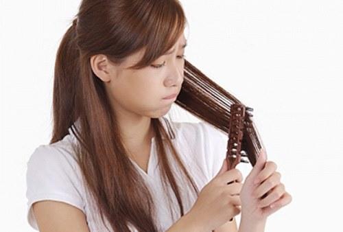 Trộn 3 nguyên liệu này ủ da đầu, tóc sẽ ngừng rụng ngay