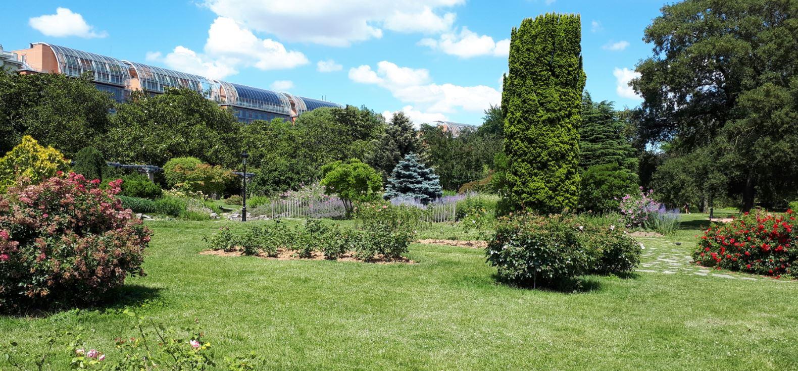 Le Parc de la Tête d'Or à Lyon avec en arrière plan la cité internationale