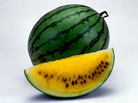Yellow Watermelon-Citrullus Lanatus-Semangka Kuning