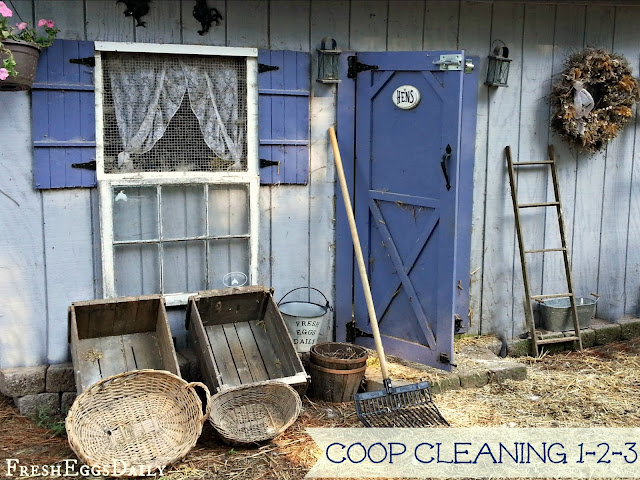 diy chicken coop cleaner 2